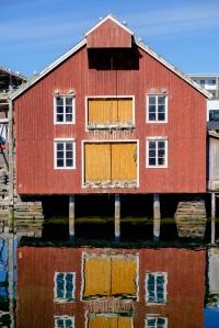 Rørvik, der Hurtigruta møtes hver kveld og måkene har reir i takmøne